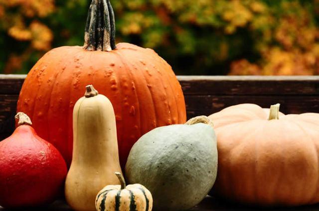 Squash: the seasonal fruit of autumn